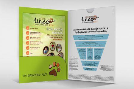 LINCE_2.jpg